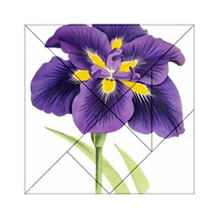 Lily Flower Plant Blossom Bloom Acrylic Tangram Puzzle (6  x 6 )