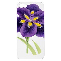 Lily Flower Plant Blossom Bloom Apple Iphone 5 Hardshell Case