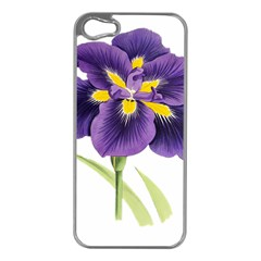 Lily Flower Plant Blossom Bloom Apple Iphone 5 Case (silver)