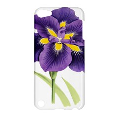 Lily Flower Plant Blossom Bloom Apple Ipod Touch 5 Hardshell Case