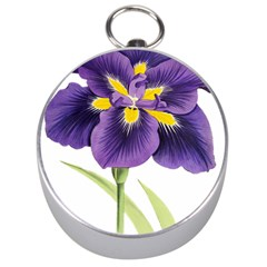 Lily Flower Plant Blossom Bloom Silver Compasses