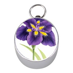 Lily Flower Plant Blossom Bloom Mini Silver Compasses