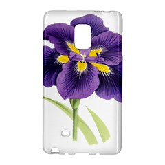 Lily Flower Plant Blossom Bloom Galaxy Note Edge