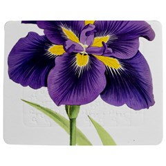 Lily Flower Plant Blossom Bloom Jigsaw Puzzle Photo Stand (rectangular)