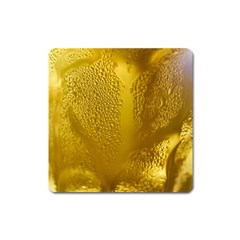Beer Beverage Glass Yellow Cup Square Magnet