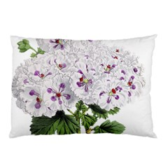 Flower Plant Blossom Bloom Vintage Pillow Case (two Sides)