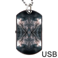 Storm Nature Clouds Landscape Tree Dog Tag Usb Flash (two Sides)