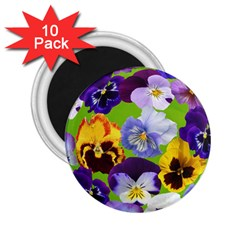 Spring Pansy Blossom Bloom Plant 2 25  Magnets (10 Pack)