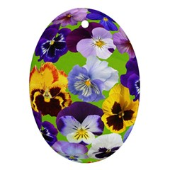 Spring Pansy Blossom Bloom Plant Oval Ornament (two Sides)