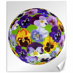Spring Pansy Blossom Bloom Plant Canvas 8  x 10