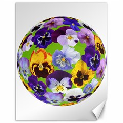 Spring Pansy Blossom Bloom Plant Canvas 12  X 16