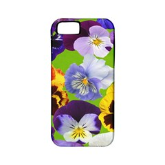Spring Pansy Blossom Bloom Plant Apple Iphone 5 Classic Hardshell Case (pc+silicone)