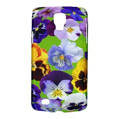 Spring Pansy Blossom Bloom Plant Galaxy S4 Active