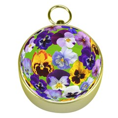 Spring Pansy Blossom Bloom Plant Gold Compasses