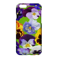 Spring Pansy Blossom Bloom Plant Apple Iphone 6 Plus/6s Plus Hardshell Case