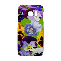 Spring Pansy Blossom Bloom Plant Galaxy S6 Edge