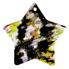 Canvas Acrylic Digital Design Ornament (star)