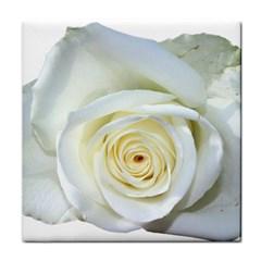 Flower White Rose Lying Tile Coasters