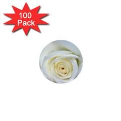 Flower White Rose Lying 1  Mini Buttons (100 Pack)