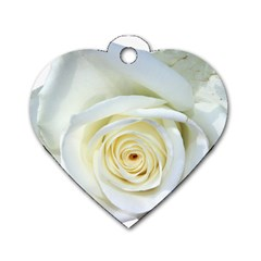 Flower White Rose Lying Dog Tag Heart (two Sides)