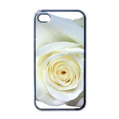 Flower White Rose Lying Apple iPhone 4 Case (Black)