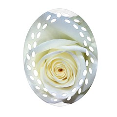 Flower White Rose Lying Oval Filigree Ornament (two Sides)