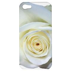 Flower White Rose Lying Apple iPhone 5 Hardshell Case
