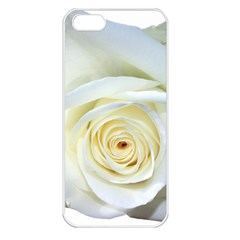 Flower White Rose Lying Apple iPhone 5 Seamless Case (White)