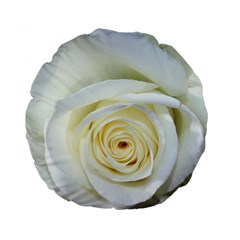 Flower White Rose Lying Standard 15  Premium Round Cushions