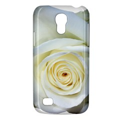 Flower White Rose Lying Galaxy S4 Mini