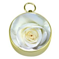 Flower White Rose Lying Gold Compasses