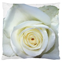 Flower White Rose Lying Standard Flano Cushion Case (two Sides)