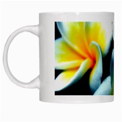 Flowers Black White Bunch Floral White Mugs