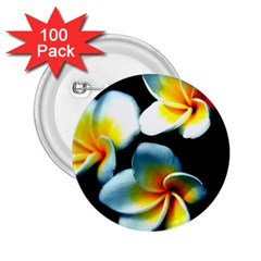 Flowers Black White Bunch Floral 2.25  Buttons (100 pack)