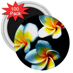 Flowers Black White Bunch Floral 3  Magnets (100 pack)