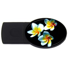 Flowers Black White Bunch Floral Usb Flash Drive Oval (2 Gb)