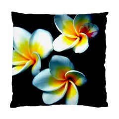 Flowers Black White Bunch Floral Standard Cushion Case (one Side)