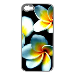 Flowers Black White Bunch Floral Apple iPhone 5 Case (Silver)