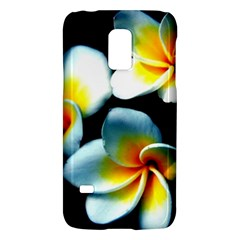 Flowers Black White Bunch Floral Galaxy S5 Mini