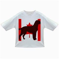 Chocolate Labrador Retriever Silo Canadian Flag Infant/Toddler T-Shirts