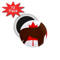 Chocolate Labrador Retriever Silo Canadian Flag 1.75  Magnets (10 pack)