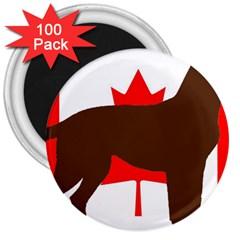 Chocolate Labrador Retriever Silo Canadian Flag 3  Magnets (100 pack)