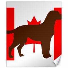 Chocolate Labrador Retriever Silo Canadian Flag Canvas 8  x 10