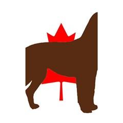 Chocolate Labrador Retriever Silo Canadian Flag Shower Curtain 48  x 72  (Small)