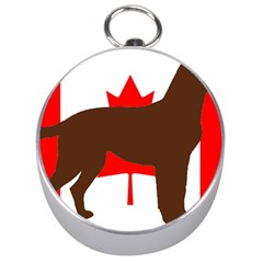 Chocolate Labrador Retriever Silo Canadian Flag Silver Compasses