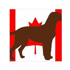 Chocolate Labrador Retriever Silo Canadian Flag Small Satin Scarf (Square)