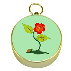 Plant And Flower Gold Compasses