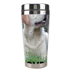 I Love My Labs W Pic Stainless Steel Travel Tumblers