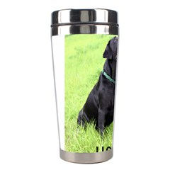 Lab Love W Pic Stainless Steel Travel Tumblers