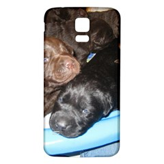 Litter Of Lab Pups Samsung Galaxy S5 Back Case (White)